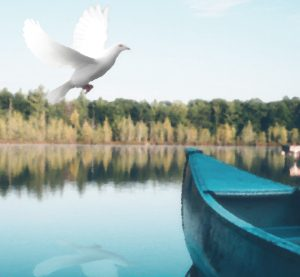 dove-canoe