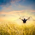 Man in wheat field joying sunset