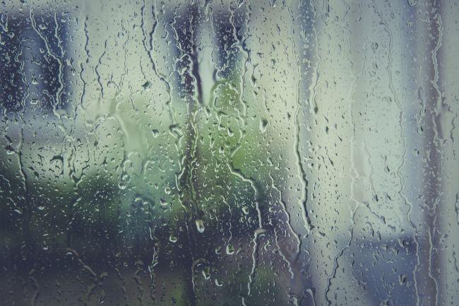 Sukkos in the Rain